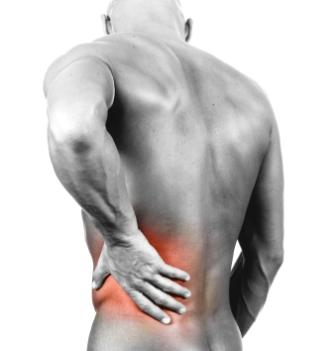 Low back pain rehabilitation